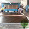 Formwork Laminated Plywood Brown Film Faced Plywood