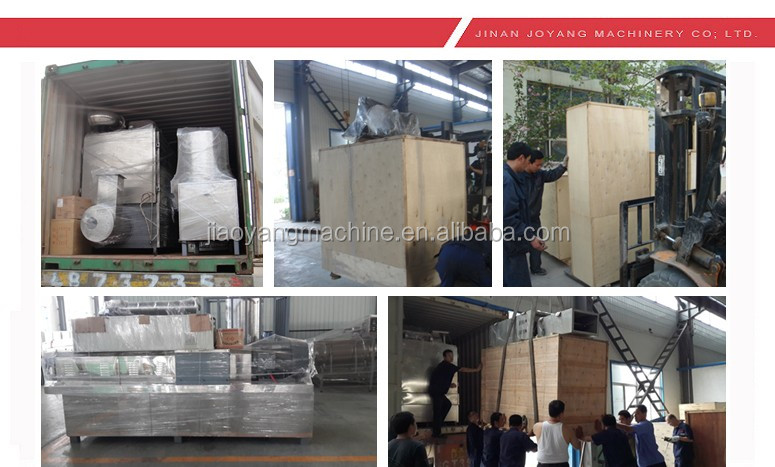 Oversea Service Turnkey Big Capacity Poultry Animal Feed Pellet Machine