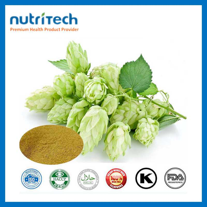 GMP Wholesale Narutal Herbal Extract Beer Hops Extract Price