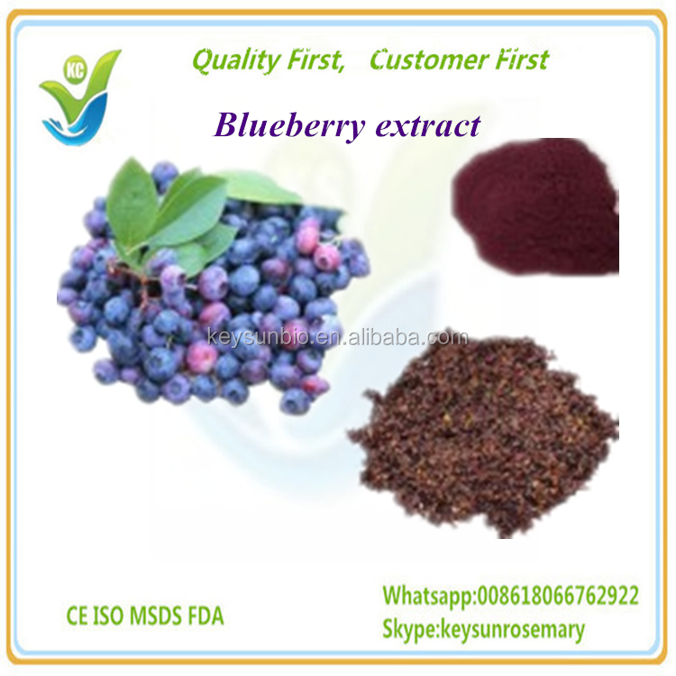 High quality Bilberry extract,Anthocyanidins
