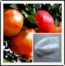 tomato plant protective cover /mango,grapefruit,peach cover/banana bunch cover