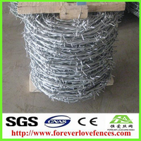 China SGS Electro Galvanized Barbed Wire