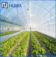 greenhouse plastic white transparent film for vegetable,flowers,mushrooms,animals, pigs,chicken