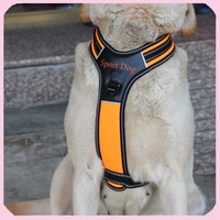 New Arrival Full Body Sports Weight Pulling Dog Harnesses