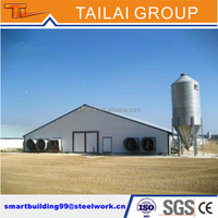 Steel Structure Layer Broiler Chicken Farming