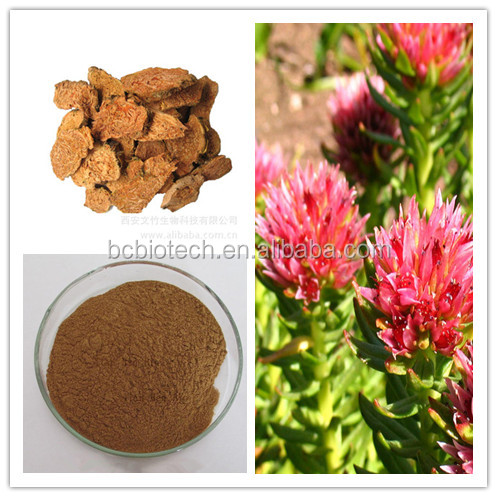 High Purity Organic Rhodiola Rosea Extract 15% Rosavin