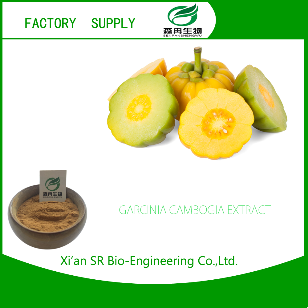 SR Garcinia Cambogia Plant Extract / Herbal Extracts From Reliable Suppliers Fast Loss Weight