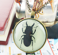 glowing in dark metal insect necklace Pendant Personalized jewelry Boys Necklace