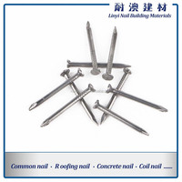 Polished/Electric Galvanized Round Wire Nails from China Factory