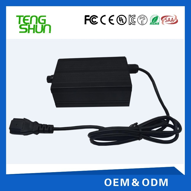 12v 10a 24v 5a automatic sealed AGM lead acid car battery charger
