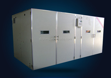 big size automatic control temperature and humidity incubator