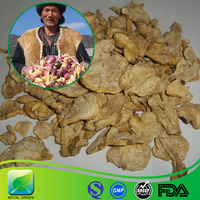 Factory Supply Maca Root Extract Powder for Hormone Improvement