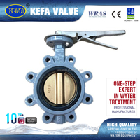 Lug Type Lever Operated Pin Backed Seat Butterfly Valve
