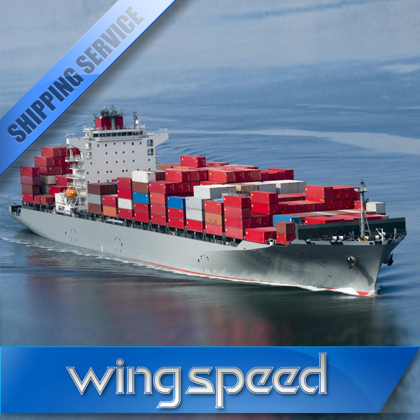 Professional China freight forwarder sea service to Indonesia/Israel/Kuwait---Skype:bonmedellen