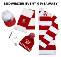 2017 hot chinese cheap new design budweiser promotional items