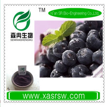 Fruit Extract Organic Maqui Berry Juice Powder
