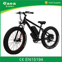 Gaea 500W 750W 1000w 8fun motor mid drive mountain ebike/fat electric bike/chopper e bicycle