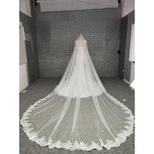 New Coming Champagne Colored Wedding Accessories Lace Trim Bridal Veil Long Wedding Veil