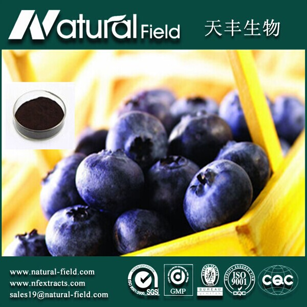Chinese Factory Supply Blueberry Extract Powder/Bilberry Extract