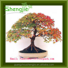 artificial small plant bonsai/artificial maple trees landscaping