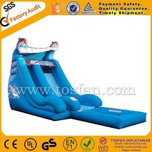 popular inflatable dolphin water slide with water pool A4032
