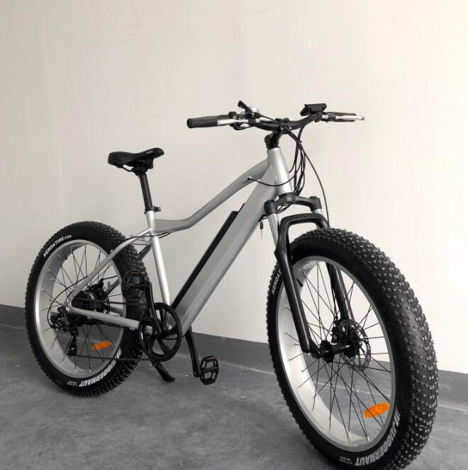 Easy Riding 48V 500W fat tire electric mountain <strong>bike</strong> with cheap price