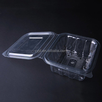 high precision plastic PET packaging tray with holes for food