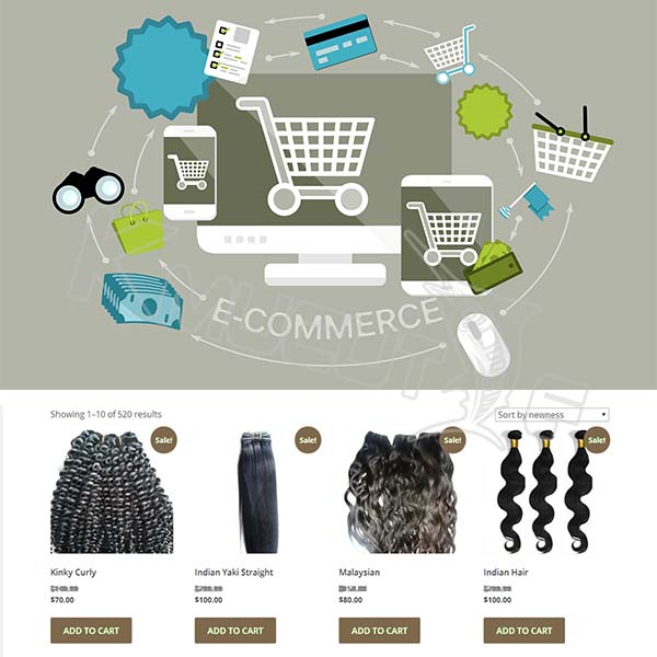 B2B b2C C2C ecommerce website design and development service