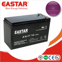 12v 7ah lead acid battery rechargable battery for mosquito bat