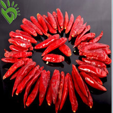 Dried Red Hot Bullet Chilli
