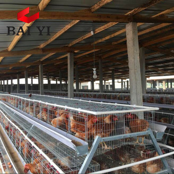 Layer Chicken Cage For Chicken Farm