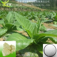 tobacco extract