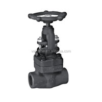 Gate Valve Forged Steel A105