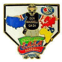 baseball defense hat pin