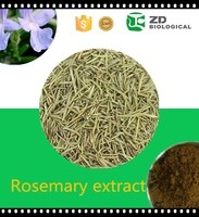 Supply Chinese Herb Rosemary Extract For Food Applications , Health Food Source Rosemary