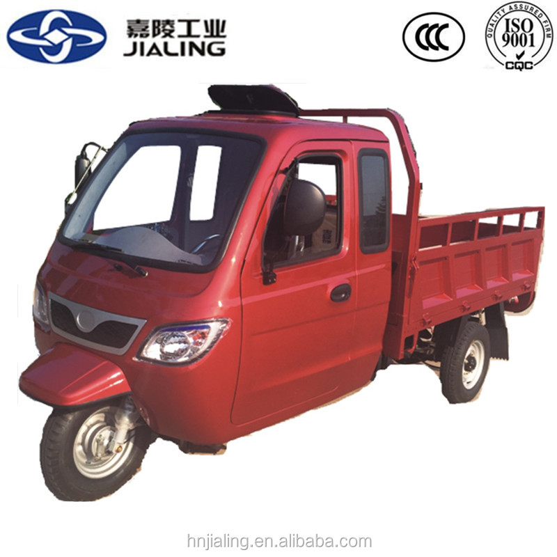factory price new petrol heavy adult cargo trike