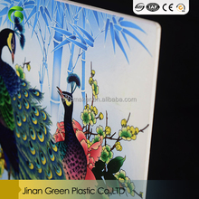 Green sale pvc sheet for photo album
