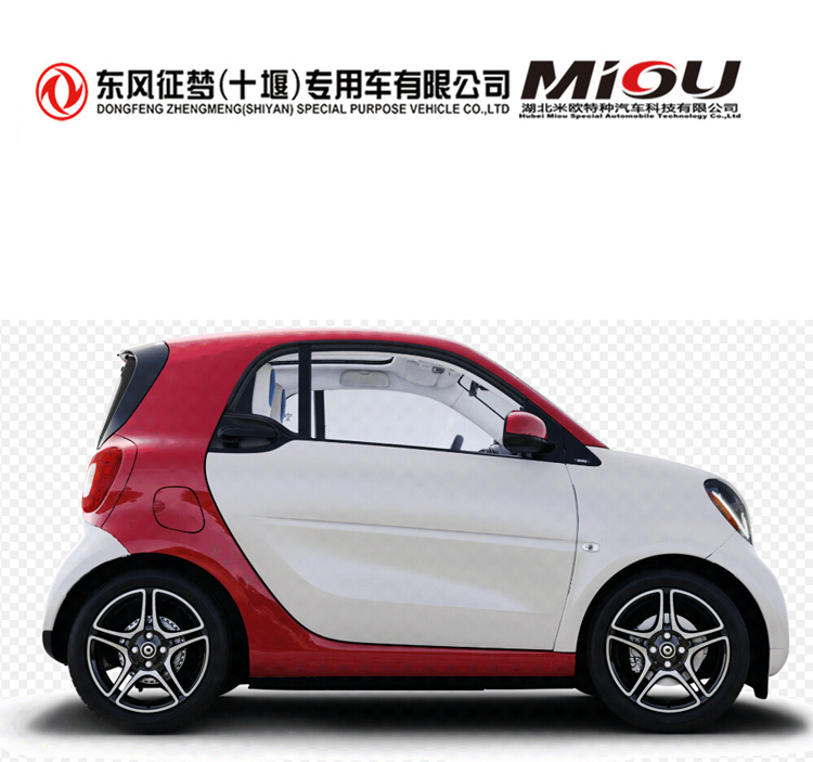 China 2 doors adult charging electric mini <strong>car</strong> with EEC certification