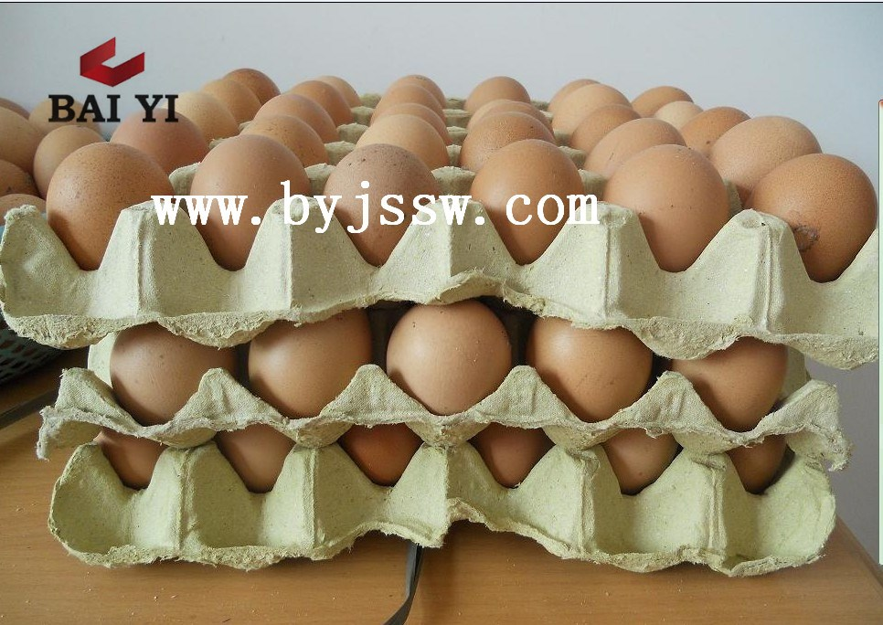 Biodegradable Recycle Molded Paper Pulp Egg Trays Price For Sale
