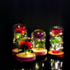 Wholesale Glass Display Dome With Rose