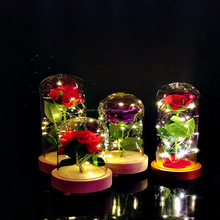 wholesale glass display dome with rose led string light