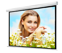 4:3 350inch motorised business partner for projector screen