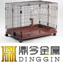 Colourful animals show cages