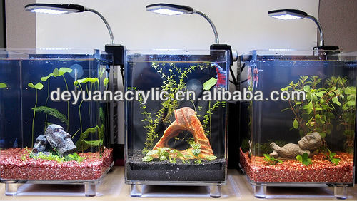 Custom/Mini Acrylic Fish Tank