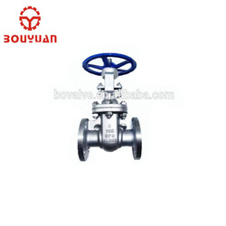 Stainless Steel 316 Wcb Manual Flanged Rising Extended Long Stem Gate Valve