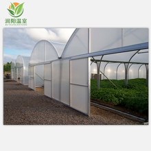 low cost tomato agricultural plastic film multi span tunnel green house greenhouse frame for sale