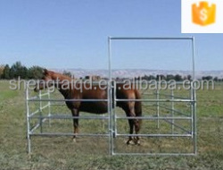 hot sale chain link used horse corral panels made in China