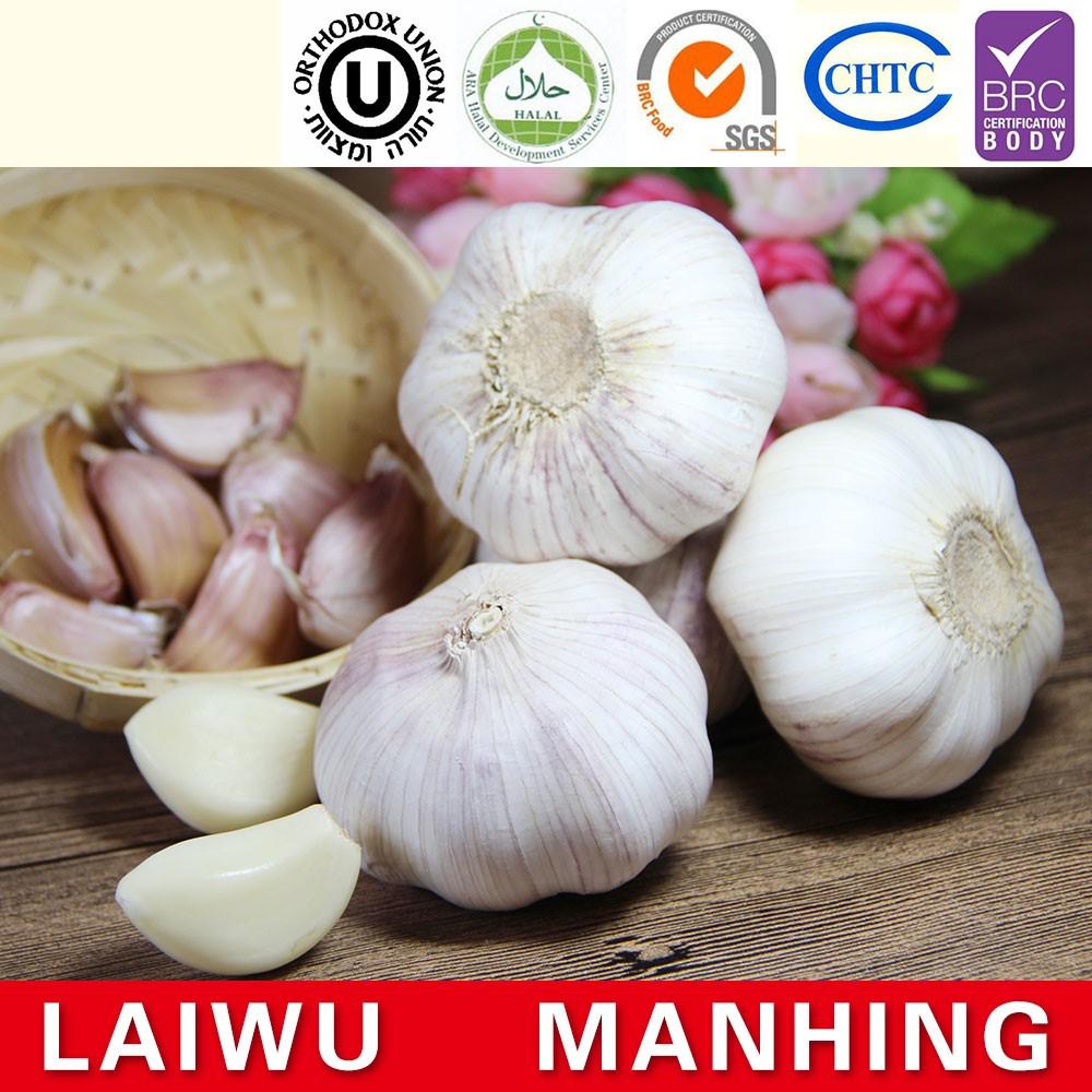 Red fresh garlic supplier
