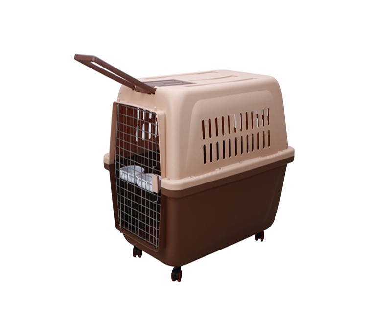 pet transport box for cats
