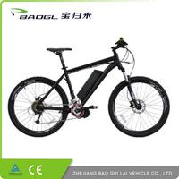 Exquisite mountain electronic sporting e-bike dutch bicycle